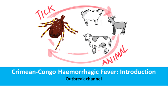 Crimean-Congo Haemorrhagic Fever: Introduction