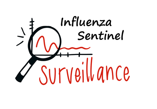 Influenza sentinel surveillance training