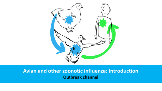 Avian and other zoonotic influenza: Introduction